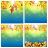 Autumn Natural Leaves Background Set brillante Illustrazione di vettore Immagine Stock Libera da Diritti