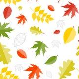 Autumn Natural Leaves Seamless Pattern brillant Photo stock