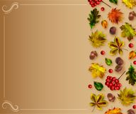 Autumn natural template. Vector stock illustration