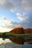 Autumn nature. Scenery with a pond, colored trees and sky Royalty Free Stock Images
