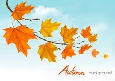 Autumn nature background with colorful leaves royalty free illustration