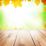 Autumn nature background with maple leaves and wooden table Royalty Free Stock Photos
