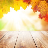 Autumn nature background with maple leaves, wooden table Stock Photo