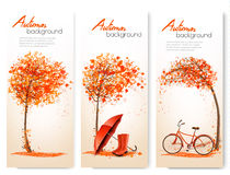 Autumn nature banners with colorful tree and a bicycle. And umbrella. Vector vector illustration