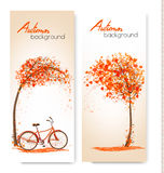 Autumn nature banners with a tree and a bicycle. Royalty Free Stock Photography