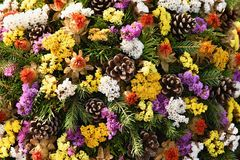 Autumn nature concept.Beautiful autumn decorations. Colorful autumn flowers at the cemetery - Halloween. Stock Image