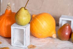 Autumn nature concept. Fall fruit and vegetables on wood. Thanksgiving dinner. White wooden box. on a concrete light background royalty free stock image