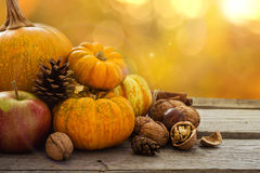 Autumn nature concept. Fall fruit and vegetables on wood. Thanksgiving dinner. Blur background, light effect Royalty Free Stock Image