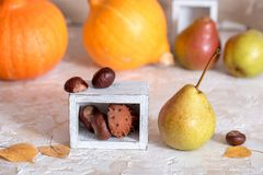 Autumn nature concept. Fall fruit and vegetables on wood. Thanksgiving dinner. Chestnut nuts stock images
