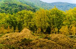 Autumn Nature Landscape Background Royalty Free Stock Photography