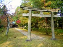 Autumn nature, Ninnaji temple gardens in Kyoto Royalty Free Stock Photo