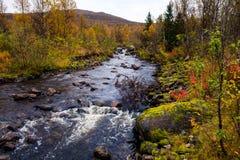 Autumn Nature in Norvegia fotografie stock libere da diritti