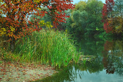Autumn nature on the river landscape Royalty Free Stock Images