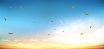 Autumn Nature Sky-Bild Stockfotografie