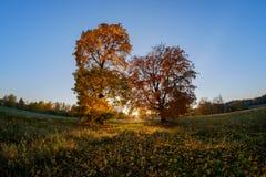 Autumn nature at sunset stock photos