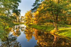 Autumn Nature With Trees och flodvatten med reflexion Royaltyfria Foton