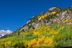 Autumn Near Bells marron Photos stock