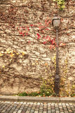 Autumn near the Louvre. Royalty Free Stock Photo