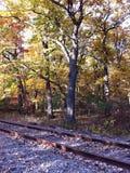Autumn Near spåren Arkivfoto