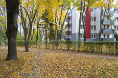 Autumn in the neighborhood 3 Royalty Free Stock Photo