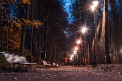 The autumn in the Neskuchny Garden. Autumn 2013. Russia. Moscow. Neskuchny Garden at night Stock Photography