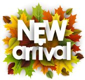 Autumn new arrival poster with leaves. Stock Photography