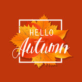 Autumn new season hello. Lettering with hand drawn letters. Label and banner template with yellow red leaves Royalty Free Stock Photos