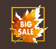 Autumn new season of sales and discounts, deals and offer Stock Images
