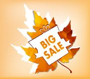 Autumn new season of sales and discounts, deals and offer Royalty Free Stock Images
