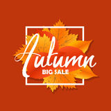 Autumn new season of sales and discounts, deals and offer. Painted lettering with his hands. Label and banner template Royalty Free Stock Image