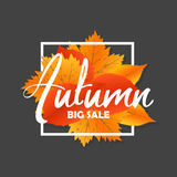 Autumn new season of sales and discounts, deals and offer. Painted lettering with his hands. Label and banner template Royalty Free Stock Photo