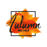 Autumn new season of sales and discounts, deals and offer. Painted lettering with his hands. Label and banner template Stock Images