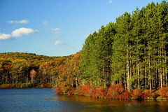 Autumn in New York. Harriman State Park in New York State in Autumn Stock Images