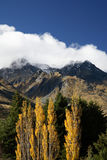 Autumn in New Zealand. Beautiful mountains and trees during autumn in New Zealand Royalty Free Stock Photos