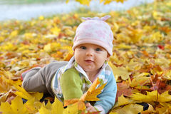 Autumn newborn baby girl lying in maple leaves and looks at camera. Close up portrait. Stock Photo