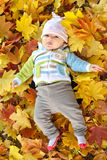 Autumn newborn baby girl lying in maple leaves and looks at camera. Close up portrait. Stock Image
