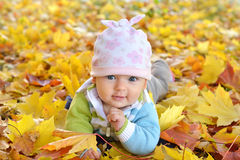 Autumn newborn baby girl lying in maple leaves and looks at camera. Close up portrait. Stock Images