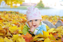 Autumn newborn baby girl lying in maple leaves and looks at camera. Close up portrait. Royalty Free Stock Image