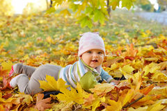 Autumn newborn baby girl lying in maple leaves and looks at camera. Close up portrait. Royalty Free Stock Photos