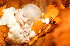 Autumn Newborn Baby Sleep, New Born Kid Sleeping in Fall Leaves royalty free stock photography