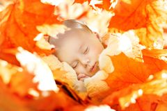 Autumn Newborn Baby Sleep, New Born Kid Sleeping in Leaves. Autumn Newborn Baby Sleep, New Born Kid Sleeping in Yellow Fall Leaves, Child one month old Royalty Free Stock Image