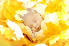 Autumn Newborn Baby Sleeping in Gele Nieuwe Bladeren, - geboren Jong geitje royalty-vrije stock afbeelding