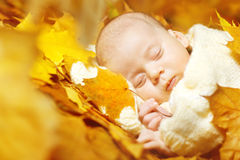Autumn newborn baby sleeping in yellow leaves Royalty Free Stock Photos