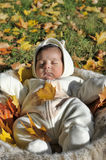 Autumn newborn baby Stock Photo