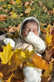 Autumn newborn baby Stock Photo
