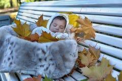 Autumn newborn baby Royalty Free Stock Photography