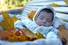 Autumn newborn baby Stock Photography