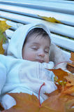 Autumn newborn baby Royalty Free Stock Photography
