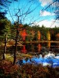 Autumn In NH Royaltyfria Foton