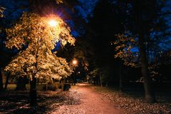 Autumn night park. City park at twilight with street lights, pathway, alley and trees. Royalty Free Stock Images